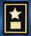 Acrylic Plaque with Brass Star Patriotic Awards