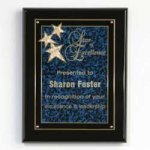 Constellation Plaque Recognition Plaques