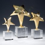 Rising Star Sales Awards