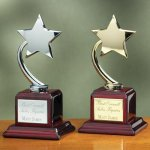 Shooting Star on Piano Finish Base Wood Cast Awards